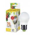Лампа светодиодная LED-Шар-Standard 7.5Вт 160-260В Е27 3000К 675Лм ASD