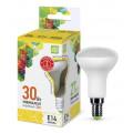 Лампа светодиодная LED-R50-standard 3.0Вт 160-260В Е14 3000К 270Лм ASD