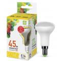 Лампа светодиодная LED-R50-standard 5.0Вт 160-260В Е14 3000К 450Лм ASD