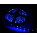Лента светодиодная (Катушка 5 метров) LS 35B-60/33 60LED 4.8Вт/м 12В IP33 синяя