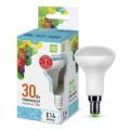 Лампа светодиодная LED-R50-standard 3.0Вт 160-260В Е14 4000К 270Лм ASD