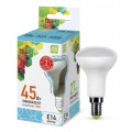 Лампа светодиодная LED-R50-standard 5.0Вт 160-260В Е14 4000К 450Лм ASD