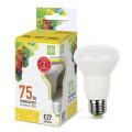 Лампа светодиодная LED-R63-standard 8Вт 230В Е27 3000К 720Лм ASD