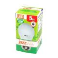 Лампа светодиодная Jazzway PLED-Eco-G45 5W Е27 3000K 400Lm 220V