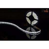 Герметичная светодиодная лента SWG SMD5050, LED300CW, 72W, 12V, IP65, 5m
