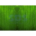 Гирлянда Светодиодный Дождь (Занавес) IP44, 2х3м, Зеленое свечение, прозрачный провод, 220В (Для помещения и улицы)